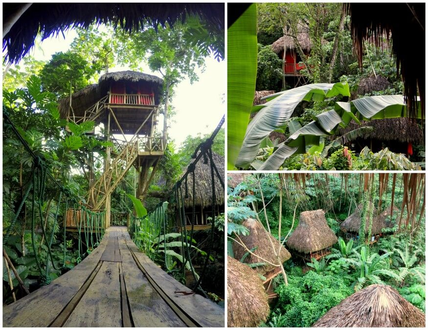 Tree House Village Samana
