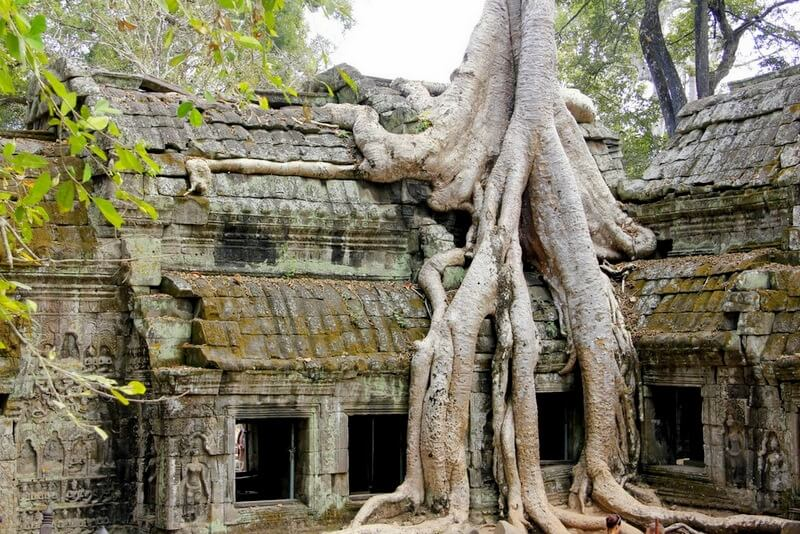 Angkor Archelogical Park Cambodia