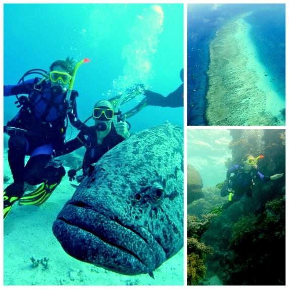 Great Barrier Reef travel blog
