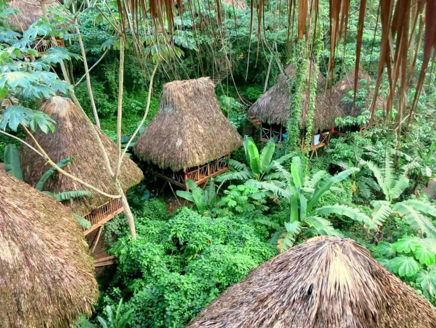 Samana Tree Houses
