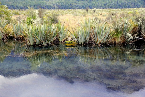 Mirror Lake sign Fjordland