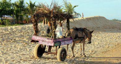 Trancoso Brazil beach