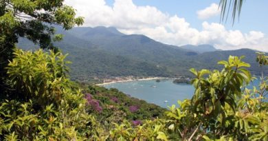 Brazil's Must-See Island