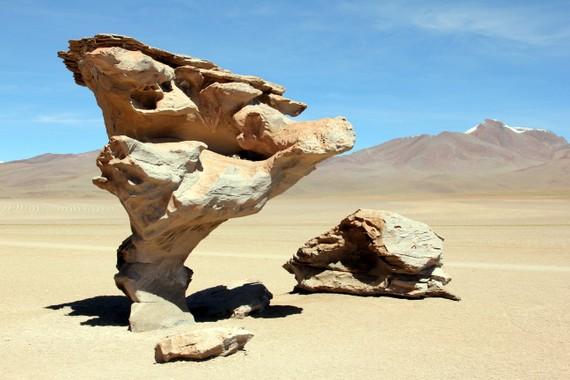 The Arbol de Piedra in Bolivia