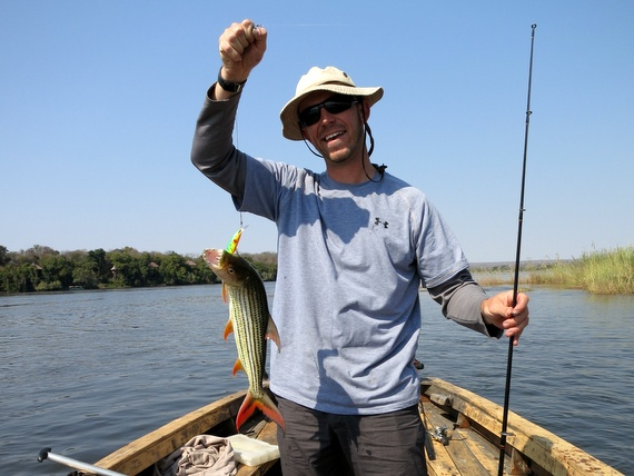 Catching Tiger Fish on the Zambezi river, Zambia