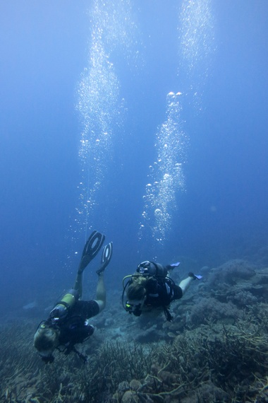 """Scuba dive the """"Edge of Reason"""" and """"Cliffs of Insanity,"""" Medjumbe, Mozambique"""