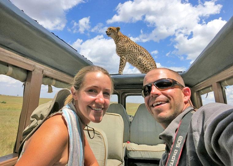 Cheetah on Our Car in the Maasai Mara – [VIDEO]