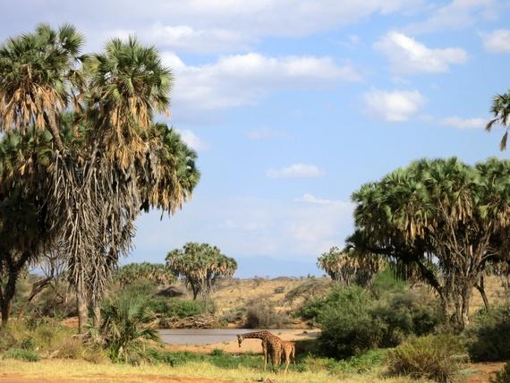 rivers in Samburu