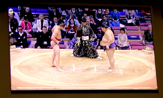 japanese sumo tournaments
