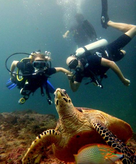 Scuba Dive Koh Bida Nok, Koh Phi Phi