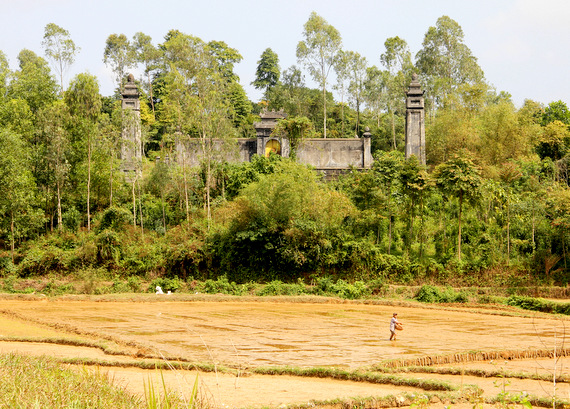 Rice paddies and temples