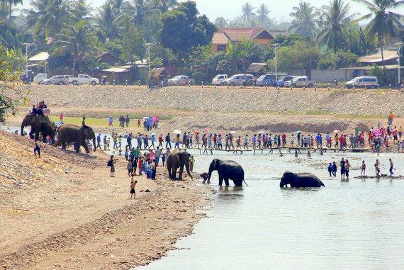 ElephantAsia Festival Laos