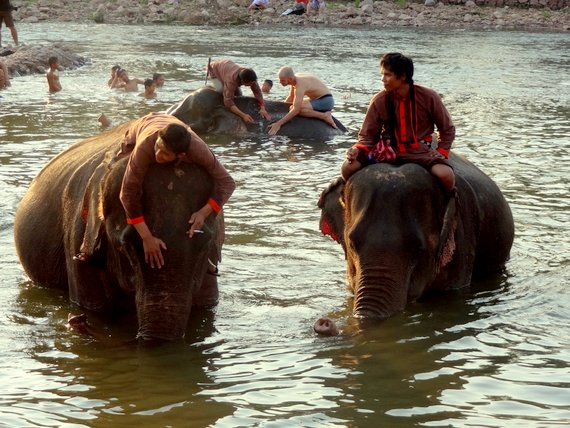 Mike washing an Elephant in Laos