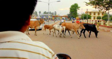 Bago, Myanmar in Three Hours