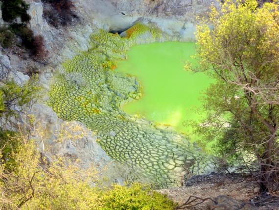 Geothermal Fantasyland: Rotorua