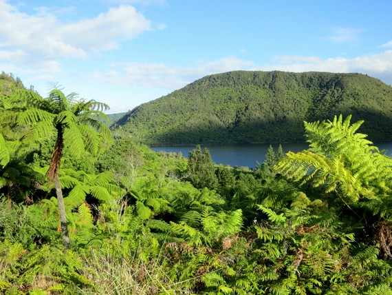 Blue and Green Lakes is the Whakarewarewa Forest