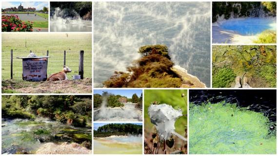 Rotorua Travel photos