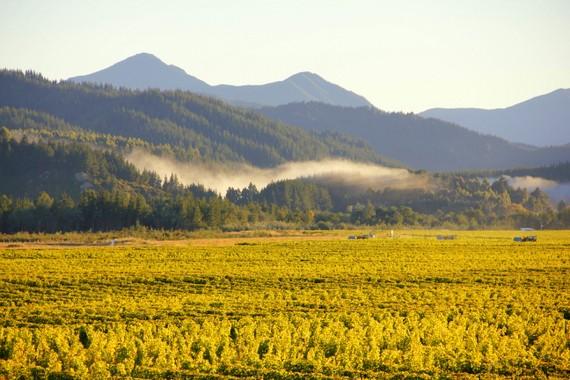 Marlborough mountains