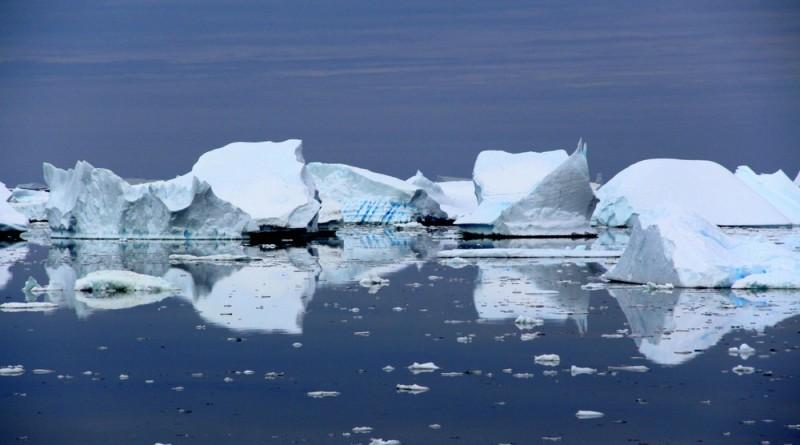 Pleneau bay icebergs
