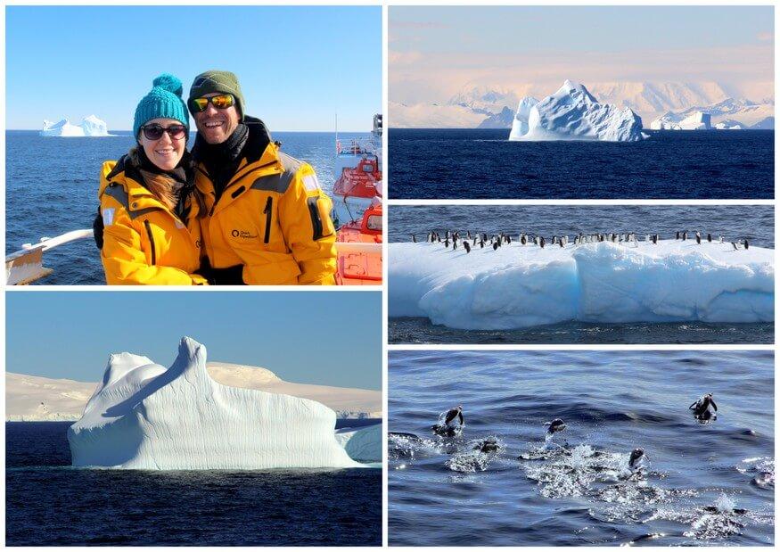 Penguins and Icebergs in Antarctica
