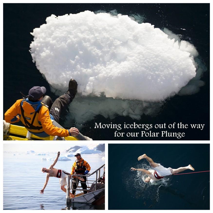 Swimming in Antarctica