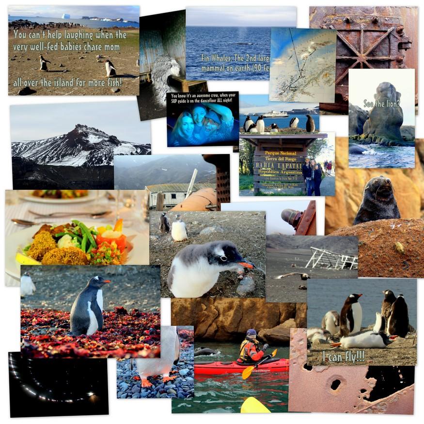 Antarctica Travel Photos