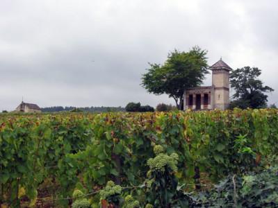 7. design-travel-vineyard-house