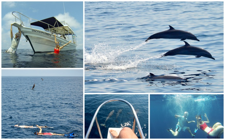 Onca Expedition Trips