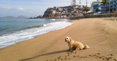 Mazatlán, Mexico: Home Away from Home