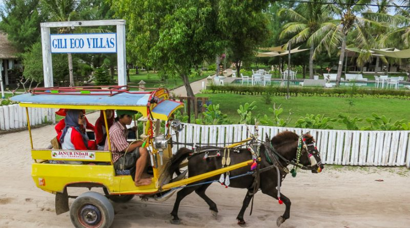 Horse carts around Gili T Indonesia