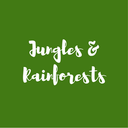 HoneyTrek Trips to Jungles & Rain Forests