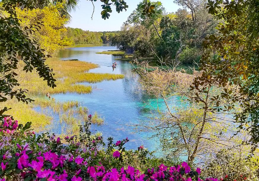 Florida Springs. Rainbow River