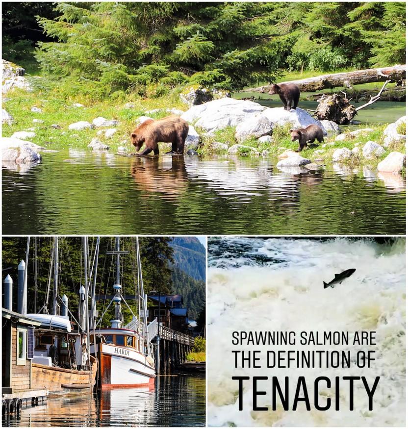 Hidden Falls Salmon Hatchery