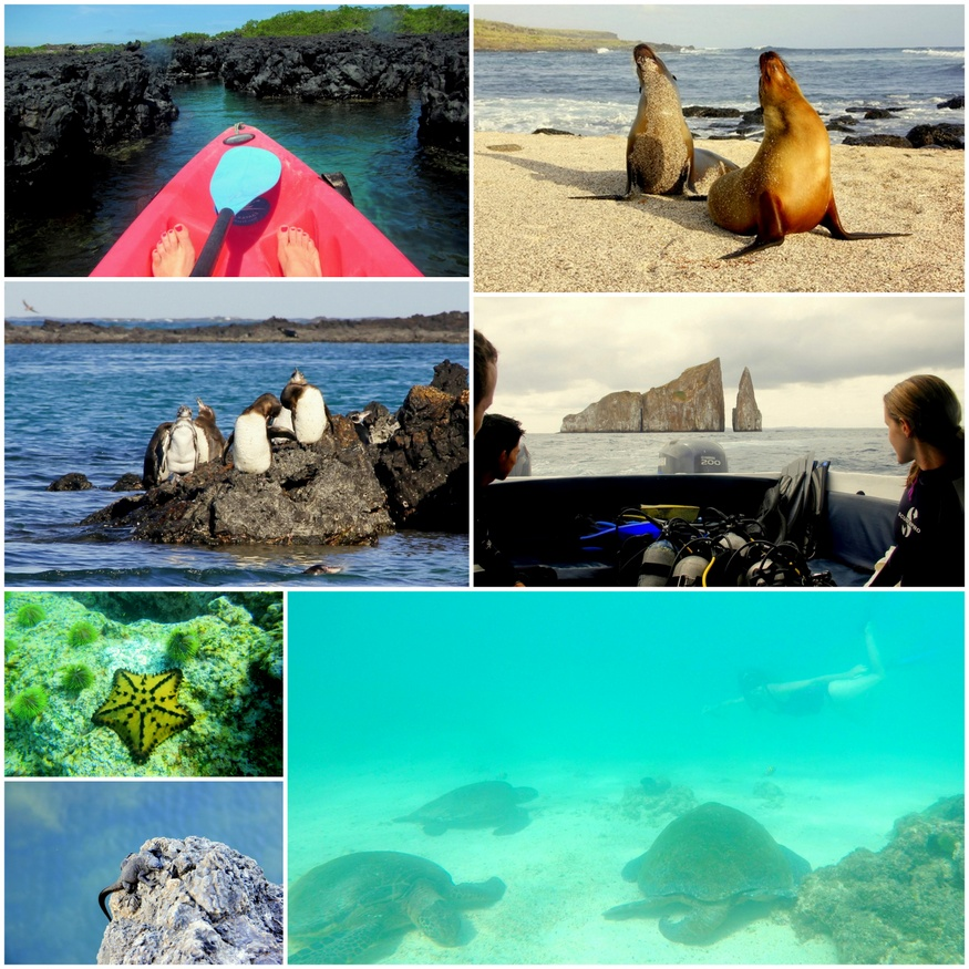 Galapagos by Kayak